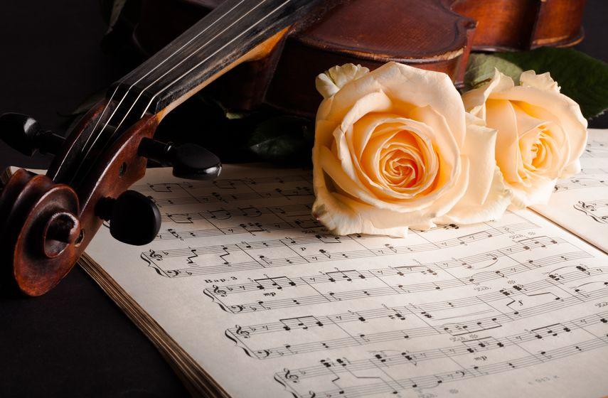 muziek de viool